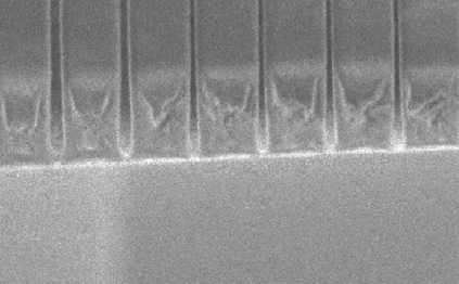 5nm Lines in SML 50